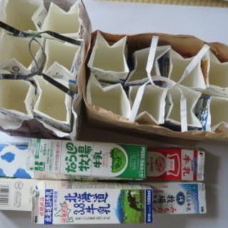 空の牛乳パック20個