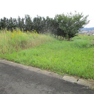 福岡便利屋空き地の草刈り及び原状復帰