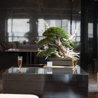 BONSAI LOUNGE in Level 8