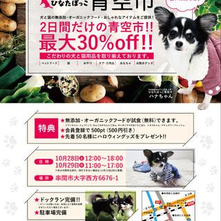 宮崎県串間市でペット用品の青空市開催!!