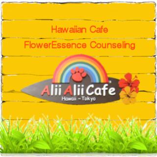 ハワイアンカフェを時間レンタルできます!
