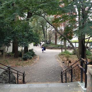11月5日(11/5)  自然豊かな公園と動物たちに癒されながらお...