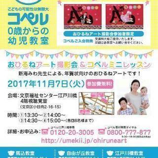 11/7おひるねアート撮影会(年賀状向け)