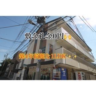 敷金礼金0円❣️ 綺麗な1LDK物件✨✨