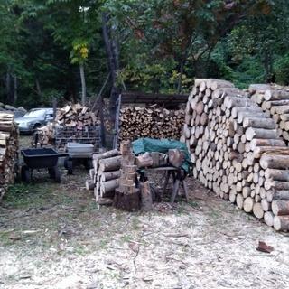 薪ストーブの燃料を探しています。伐採木の処分にお困りの方いませんか?