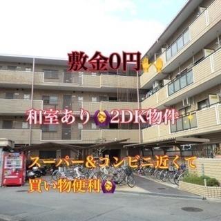 敷金0円❣️ 和室あり🙆 買い物便利な2DK物件✨