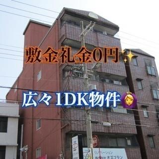 敷金礼金0円✨ 広々1DK物件🙆