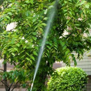 ■福岡県春日市■庭木・植木の害虫消毒剤散布【福岡グリーン 春日営業所】