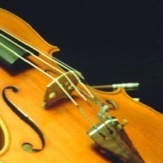 大人のバイオリン1500円/30分 週末もOK!