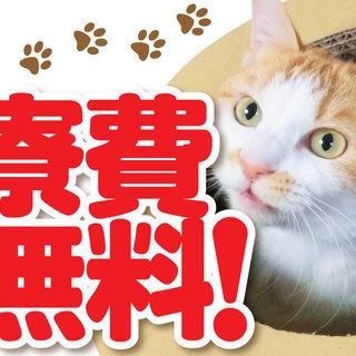 【住み込み・寮費無料】時給1400円 未経験・マイカー通勤もOK!