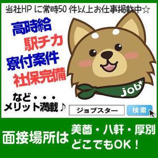 【派】札幌中央卸売市場内での青果物の入出荷作業STAFF