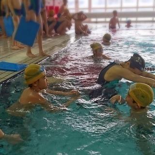 水泳指導スタッフ募集! 発達に障がいを持つ  児童~成人のための...