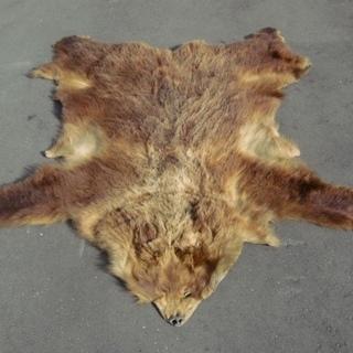 樋熊の毛皮 天然 壁掛け ラグマット カーペット 敷物
