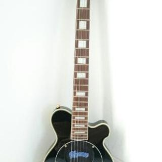 pignoseアンプ内蔵ギター(おまけ付き)