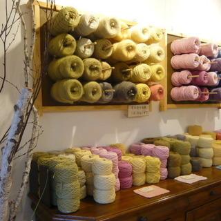 草木染め毛糸展とワークショップ