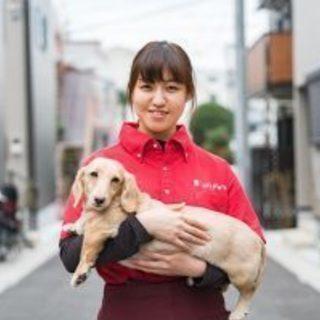 業界初!動物看護師によるペットシッターで介護も看護もお任せ下さい!