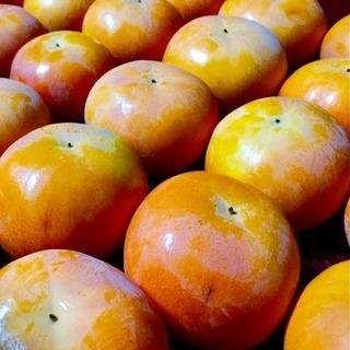 ⭐️とろける美味しさ!!⭐️ 石和の富有柿