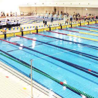 水泳コーチ,インストラクター募集 京都