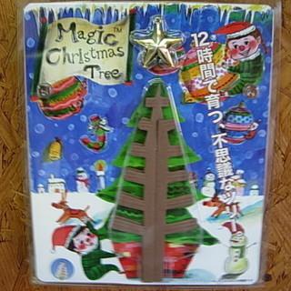 新品 マジッククリスマスツリー 育てるツリー