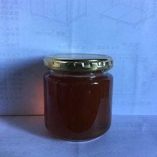 日本蜜蜂のハチミツ(夏絞り)