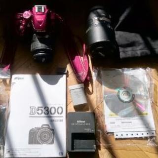 D5300 Wズームキット レッド 一眼レフカメラ