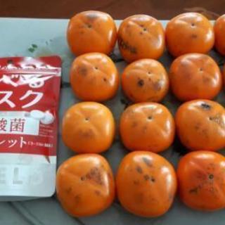 【取引完了】柿2.1kg+食べるマスク(200円相当)