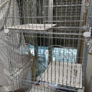 アイリスオーヤマ 猫 3段ゲージ