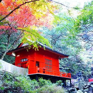 犬鳴山紅葉ハイキング&温泉 参加費無料