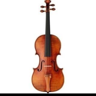 バイオリン教えてください!