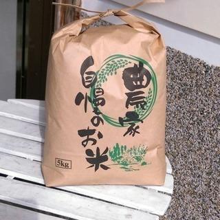 京都米🌾新米🌾コシヒカリ
