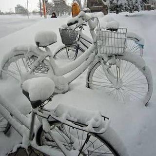 自転車の保管にお困りの方がおりまし...
