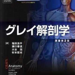 グレイ解剖学