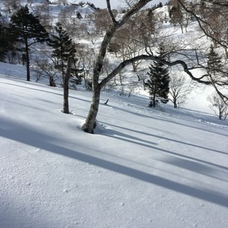 スノーボード、アウトドア