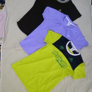 レディースドライTシャツ Lサイズ