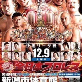 全日本プロレス チケット 2枚