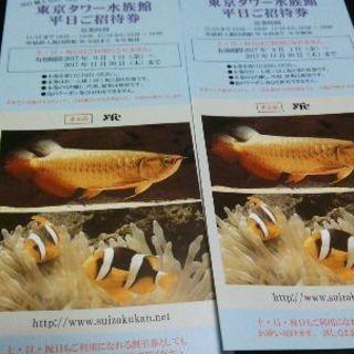 東京タワー水族館 チケット