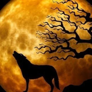 12月10日(日)🐺月夜の人狼オフ会🐺