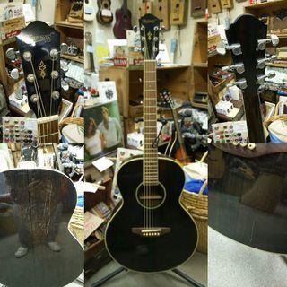 Kansas 4001T アコースティックギター