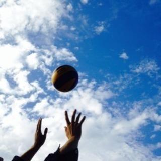 バレーボール出来る環境を探してます。