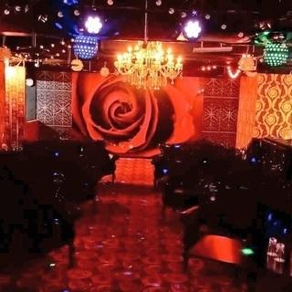 ダンサー・シンガー大募集!【心斎橋】 - ダンサー