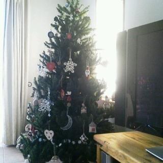 クリスマスツリー コンチネンタル 180cm