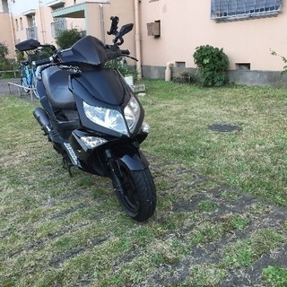 PGO MAX 200cc