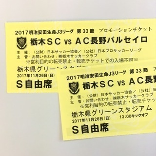 栃木SC vs AC長野パルセイロ戦チケット S自由席2枚組