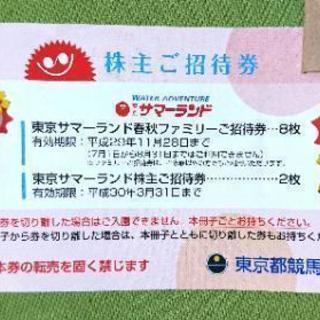相模原駅★11/28まで東京サマーランドフリーパス500円!チケッ...