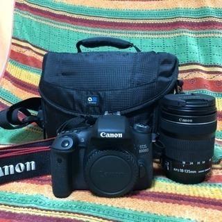 キヤノン EOS 8000D レンズセット(キャノン、CANON、...