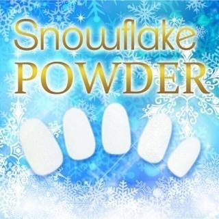 新品未使用新感覚粉雪の輝きスノーフレークプラチナパウダー