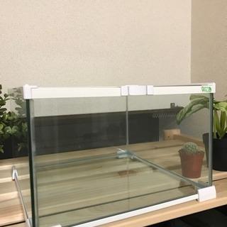 ペット用 爬虫類、両生類など向け ガラスケース