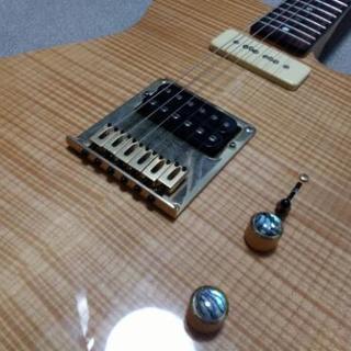 初心者向けアコースティックギター弾語り、エレキギターレクチャ