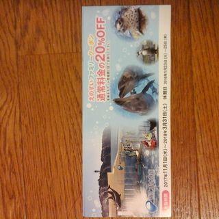 新江ノ島水族館 クーポン 20%OFF えのすい
