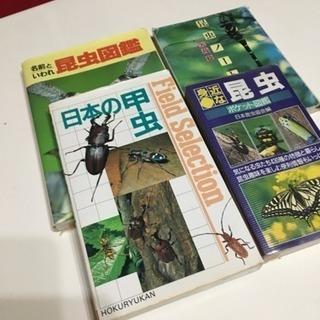 昆虫 甲虫の本  無料🌟